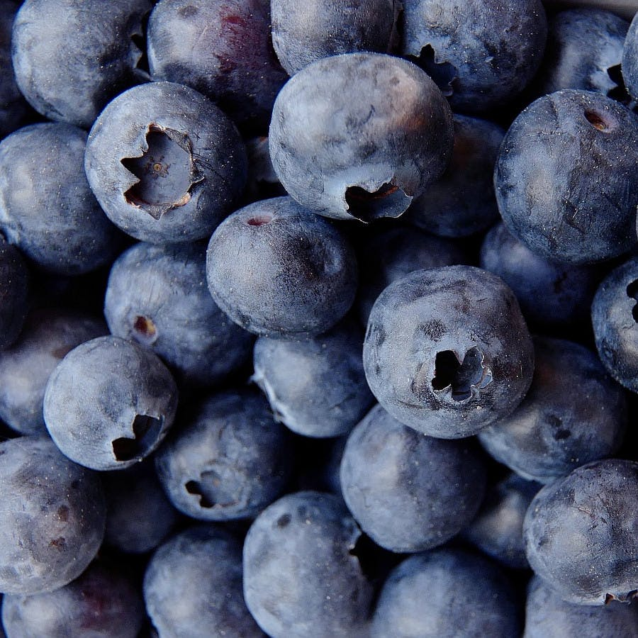 Cc0 from https://pixabay.com/en/blueberry-blueberries-food-fruit-3357568/