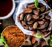 cacao beans, cocoa powder, cocoa beverage