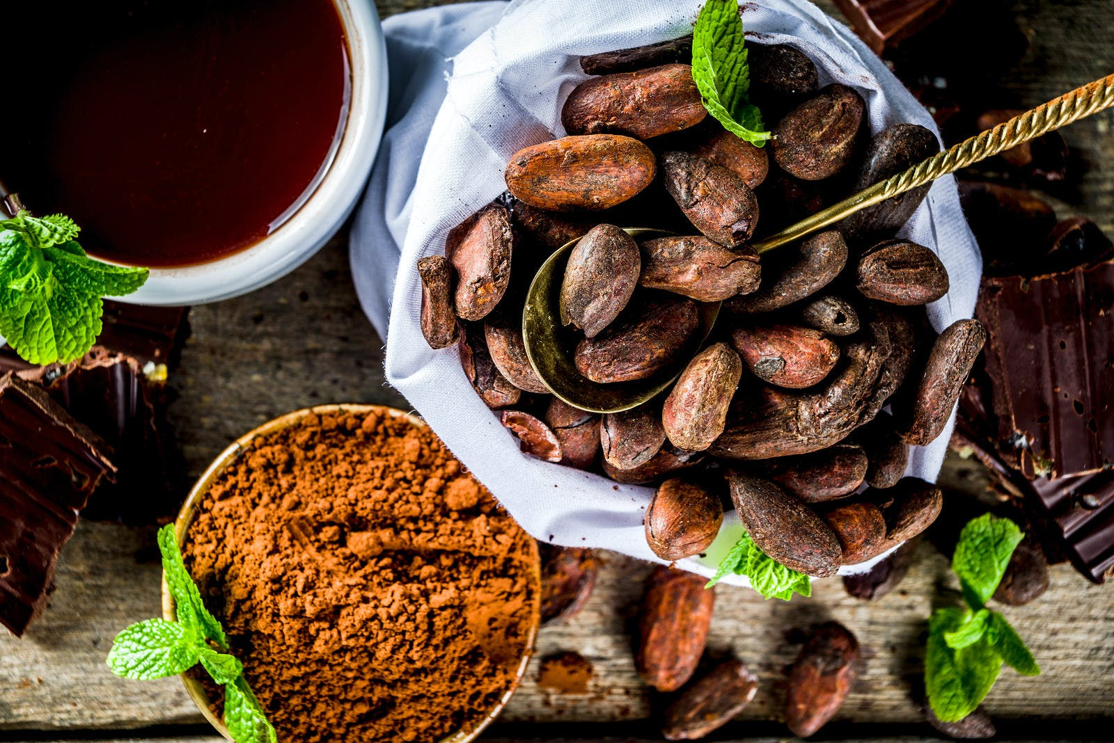 Different conditions of cocoa. Various cocoa – beans, beans, ground, crushed cocoa powder, chocolate paste, chocolate pieces and hot chocolate in a cup. On a wooden rustic background with copy space for text