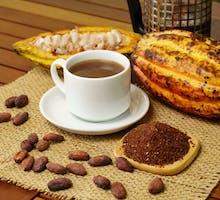 cacao pod with hot dark cocoa beverage