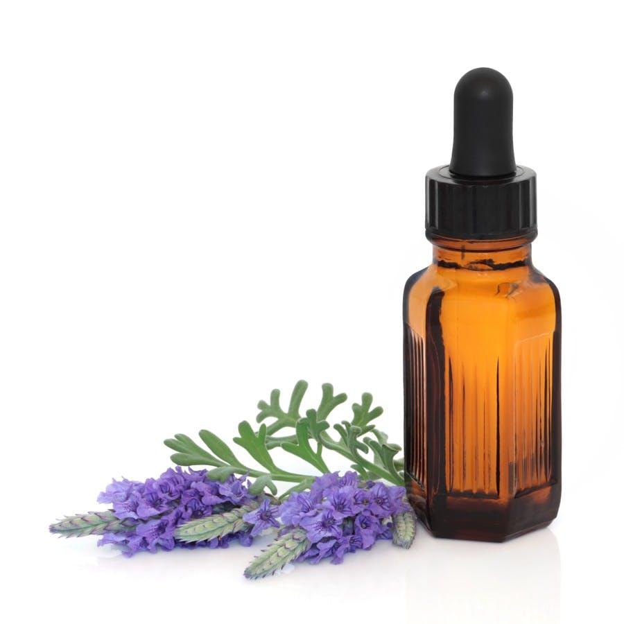 Lavender herb flower leaf sprigs with an aromatherapy essential oil dropper bottle over white background.