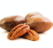 pecans both shelled and in their hulls
