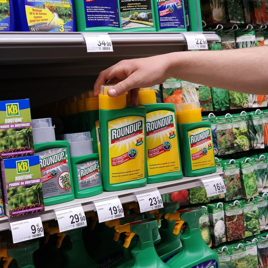 Shelf with containers of the herbicide Roundup (glyphosate)