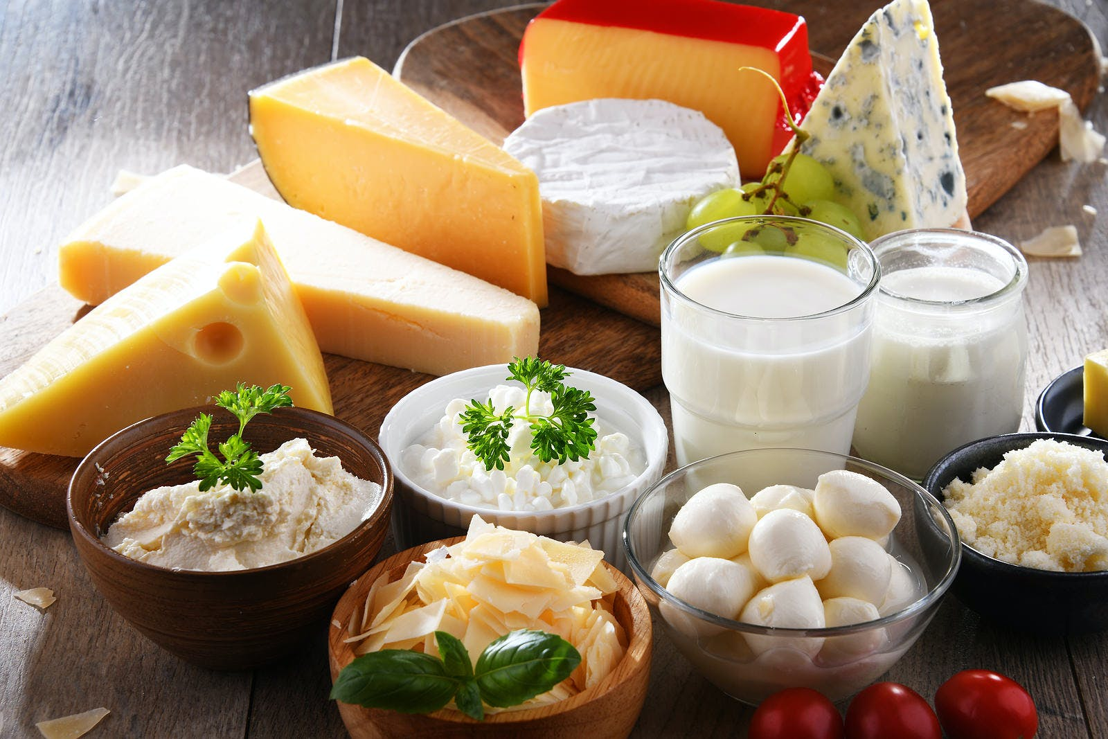 Variety of dairy products including cheese and milk