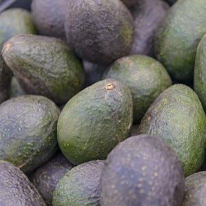 Avocado avocados healthy fat