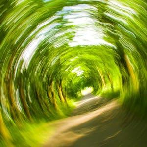 a dizzy view