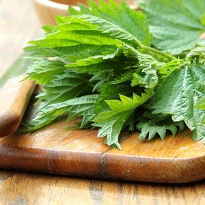 Fresh stinging nettle on a cutting board . ** Note: Shallow depth of field