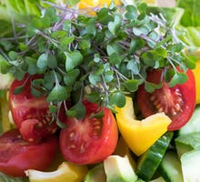 tomato, bell pepper, kale greens, broccoli greens on salad. sources of vitamin C in food